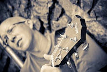Bw guitar