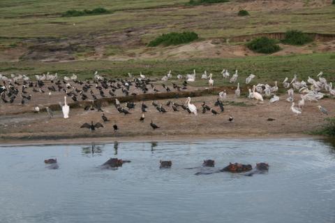 Africa_2007_457